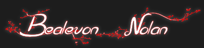 Bealevon Nolan - Author - Logo